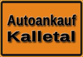 Autoankauf Kalletal